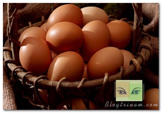 Làm rõ 10 sự thật bạn lầm tưởng về trứng gà