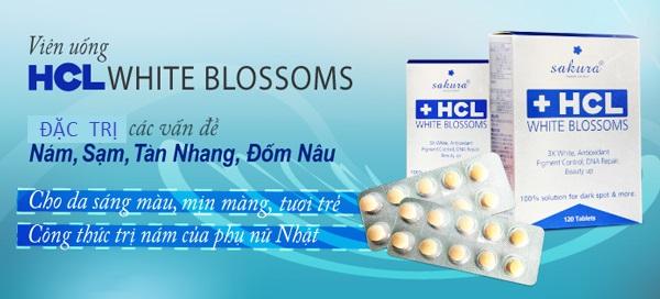 Sakura HCL White Blossom giá bao nhiêu
